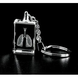 Lungs with Larynx Crystal Key Chain