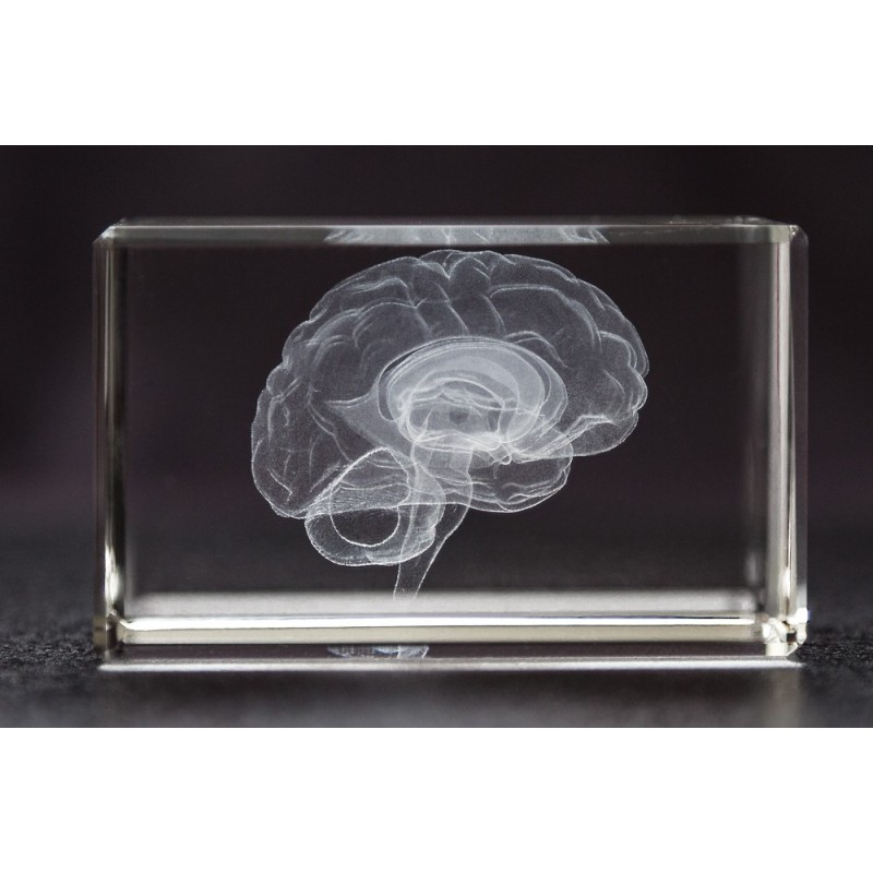 Brain Crystal 1lb front view