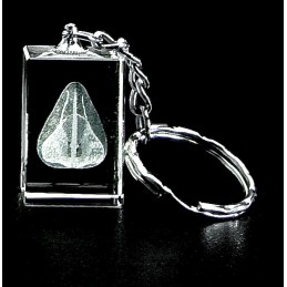Nose Crystal Key Chain