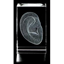 Outer Ear Crystal Art