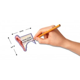 Ear Structure Stick Note dimensions