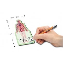 Body Stick Note dimensions