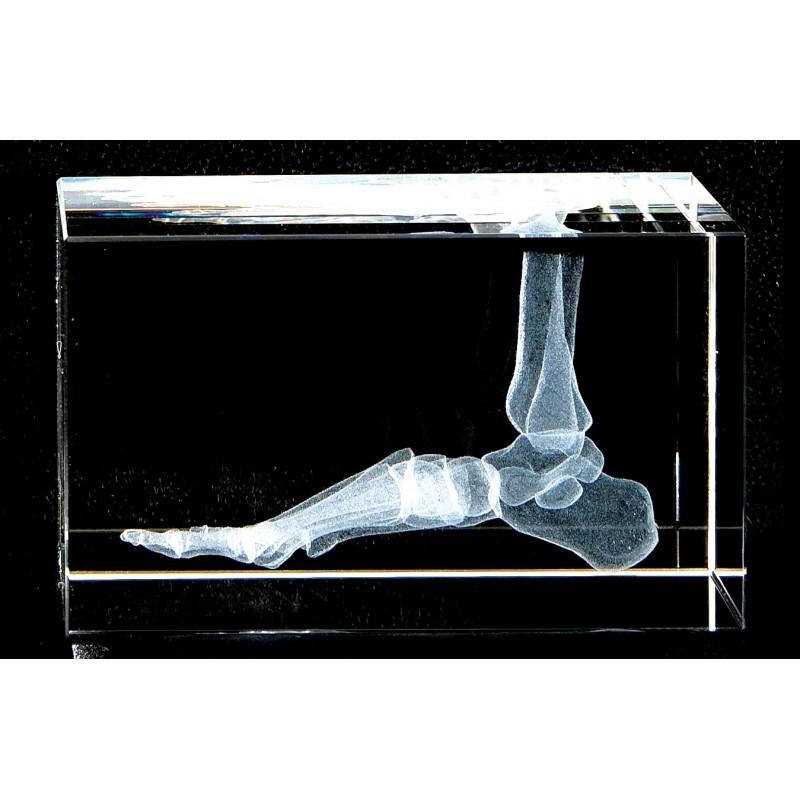 Foot Crystal Art