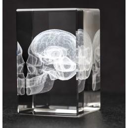 Skull and Brain Crystal Art diagonal view