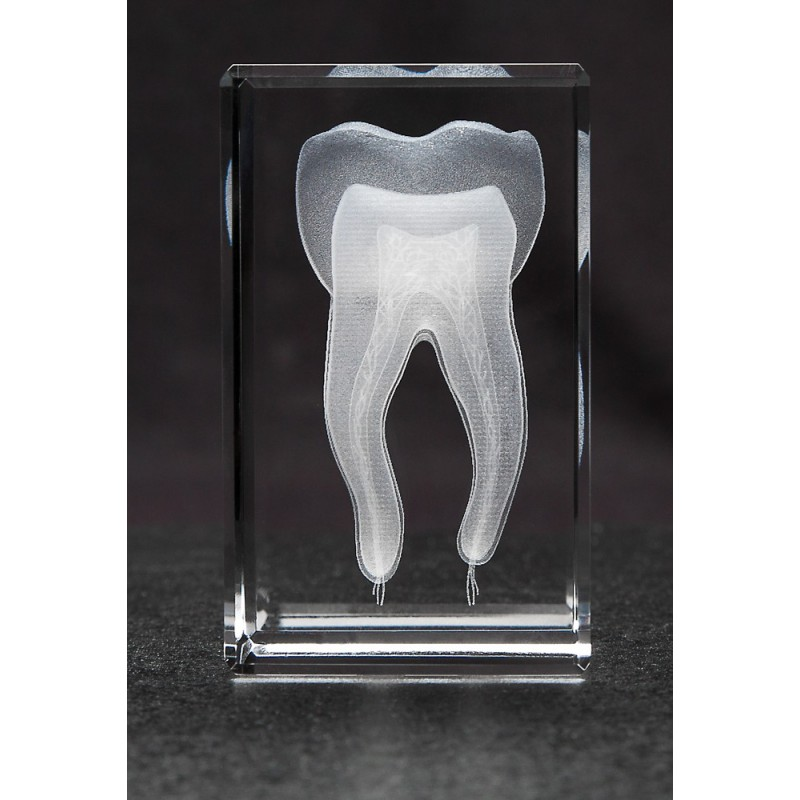 Tooth Crystal 1lb Front View