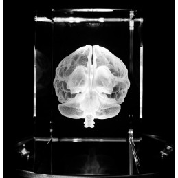 Brain Extra Large Crystal Art end view