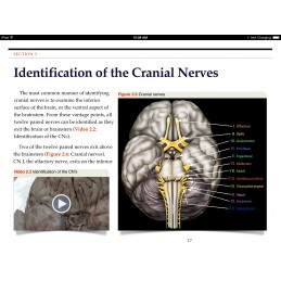 Cranial Nerves iBook Video of Cranial Nerves