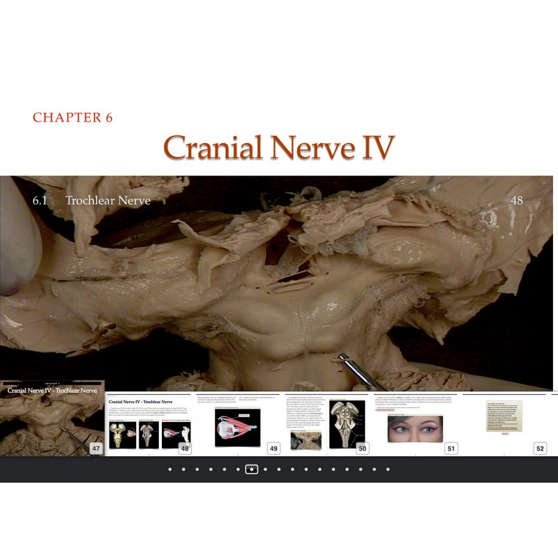 Cranial Nerves iBook Thumbnail Navigate