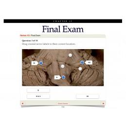 Cranial Nerves iBook Detailed Final Exam