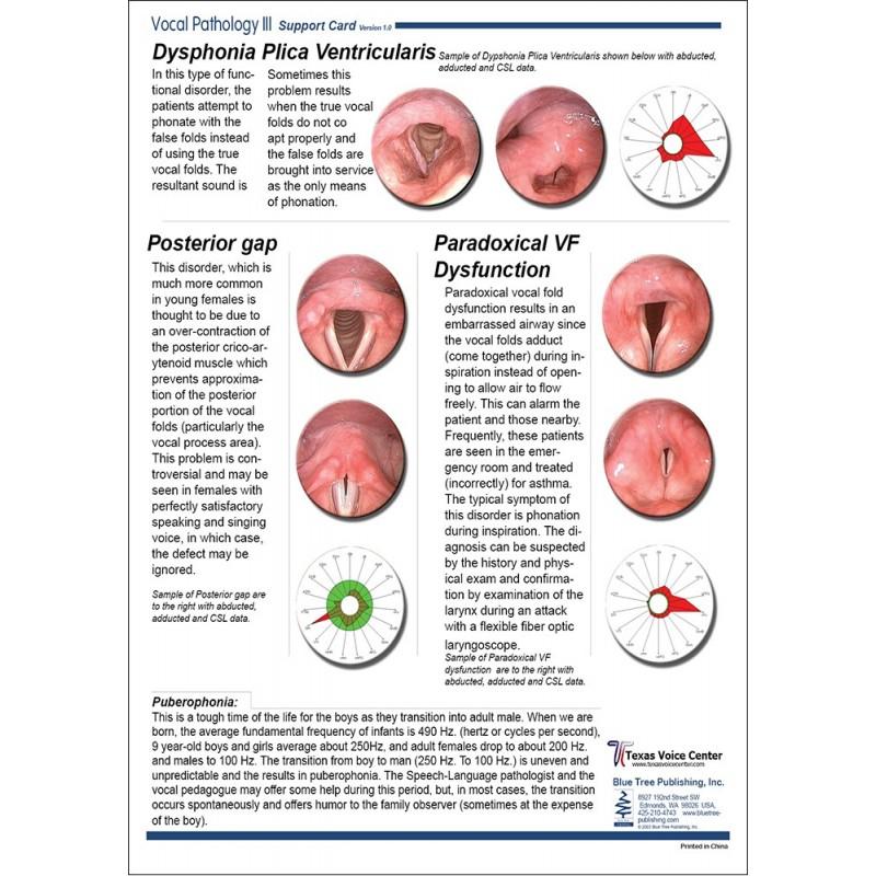 Vocal Pathology III Anatomical Chart back