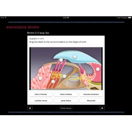 Ear ID iBook Knowledge Review