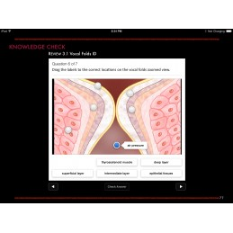 Larynx and Vocal Folds ID iBook chapter review