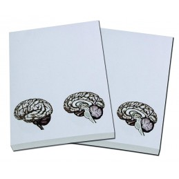 Brain Note Pad 2 pack