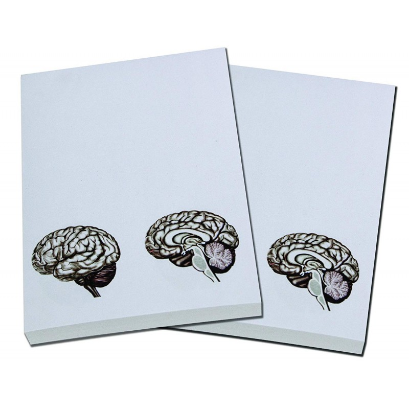 Brain Note Pad 2 pack