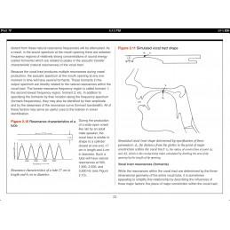 Speech Articulation iBook figure content