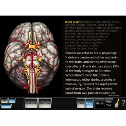 Cerebrum ID Mobile App blood inferior view