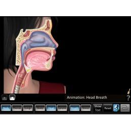 Respiration ID Mobile App head breath
