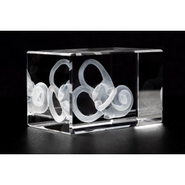 Cochlea Crystal Art 1lb diagonal view