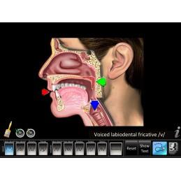 Speech Articulation - Fricatives Mobile App key highlight
