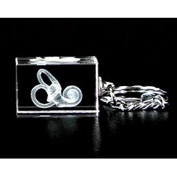 Hearing Gift Box Set 01 cochlea crystal key chain