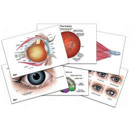 Eye Gift Box Set 01 eye mini card set