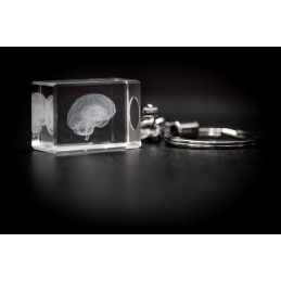 Brain Crystal Key Chain diagonal view