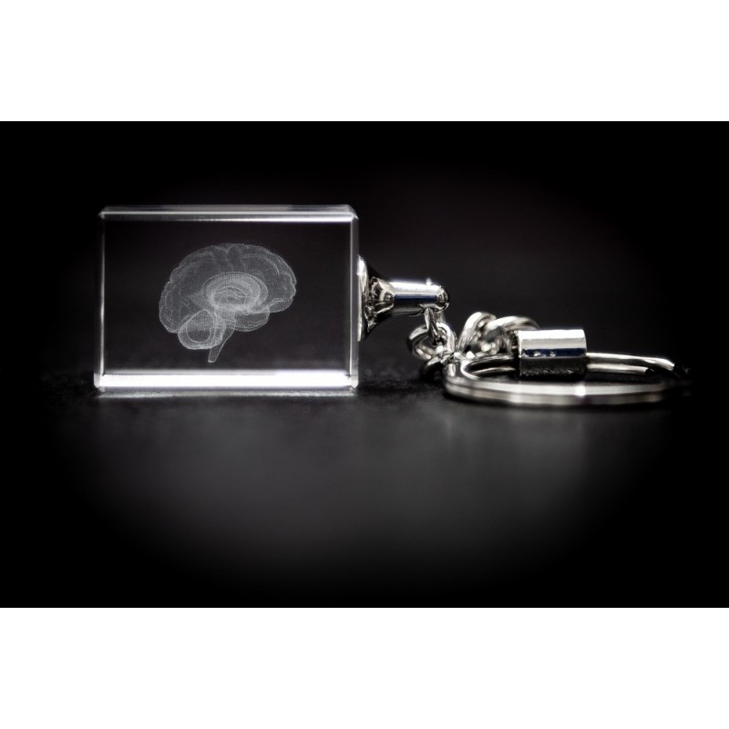 Brain Crystal Key Chain front view