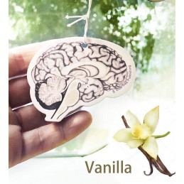 Brain vanilla smell