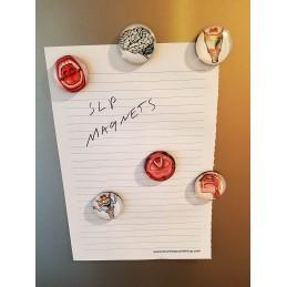 SLP Magnet Set example