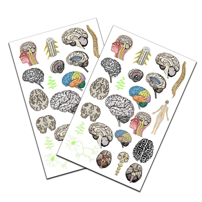 Brain Tattoo 2 pack