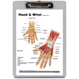 Hand and Wrist Dry Erase Clipboard front