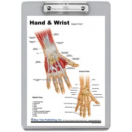 Hand and Wrist Dry Erase Clipboard back