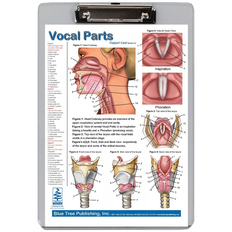 Vocal Parts Dry Erase Clipboard front