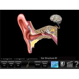 Hearing 9 App Computer Software Set - Ear ID