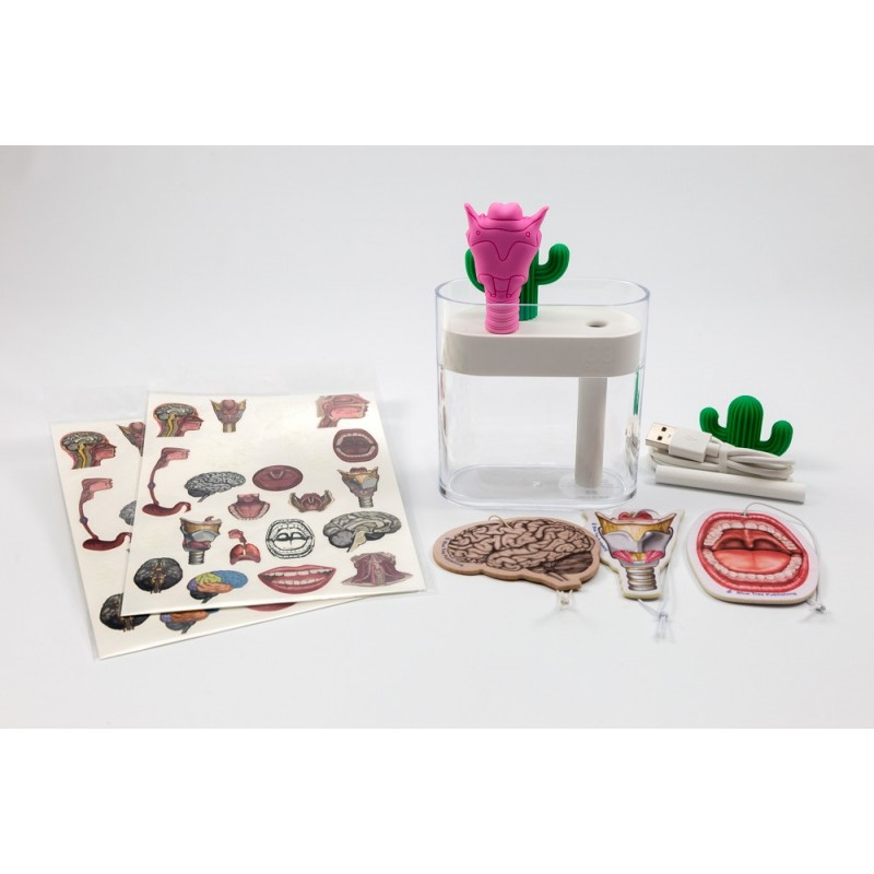 SLP Larynx and Cactus Humidifier Set includes