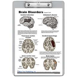 Brain Disorders Dry Erase Clipboard back