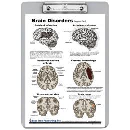 Brain Disorders Dry Erase Clipboard back