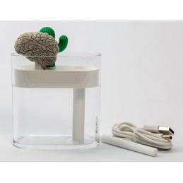 Brain and Cactus Humidifier Set