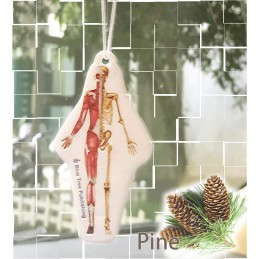 Muscles and Skeleton Air Freshener