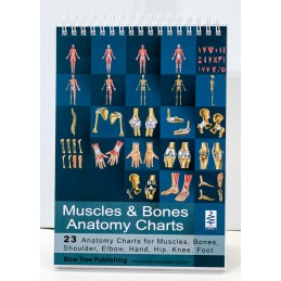 Muscles and Bones Flip Chart
