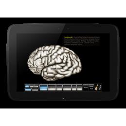 Cerebrum ID Mobile App
