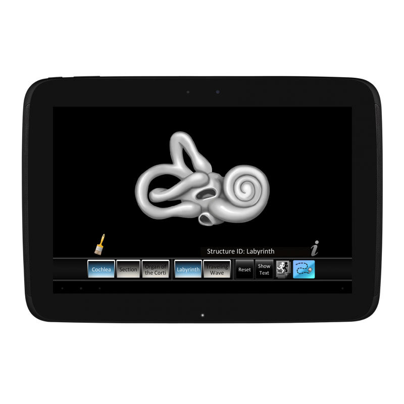 Inner Ear ID Mobile App