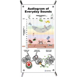 Audiogram Small Poster with stand