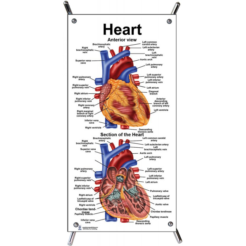 Heart Small Poster with stand