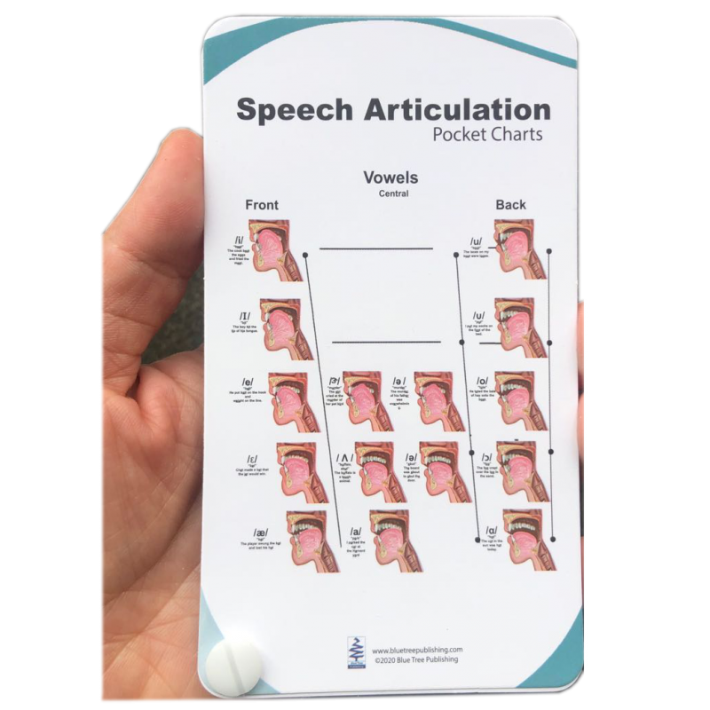 Speech Articulation Pocket Charts