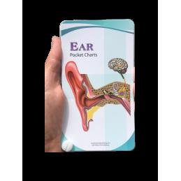 Ear Pocket Chart