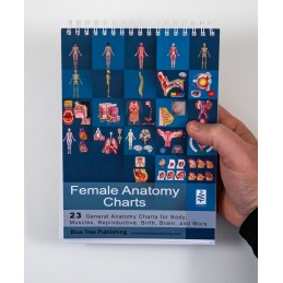 Female Anatomy Flip Chart cover view