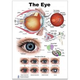Eye Large Poster