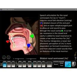 Speech Articulation Five Computer Software App Set - Semivowels