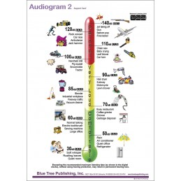 Hearing Computer Software and Chart Set - Audiogram Two Anatomical Chart front